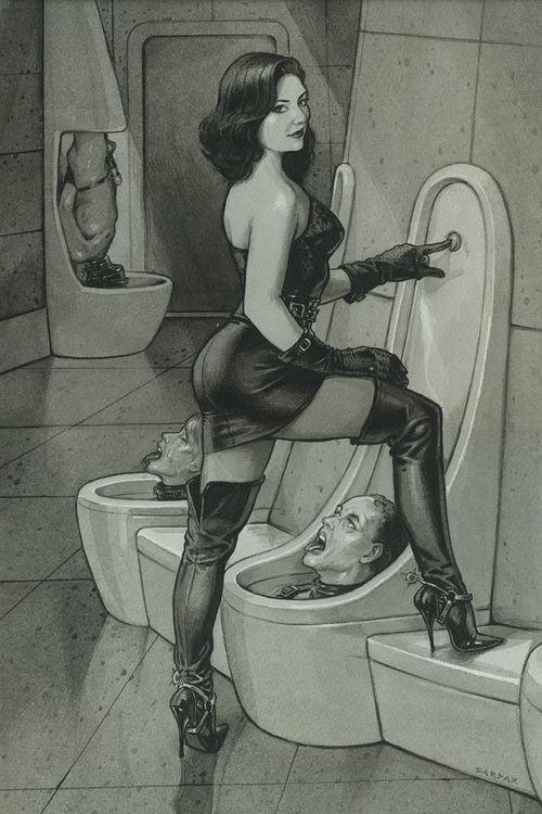 Picture- Femdom toilet Sardax style